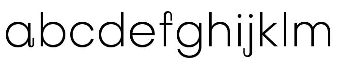 Subjectivity-Light Font LOWERCASE
