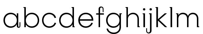 SubjectivitySerif-Light Font LOWERCASE