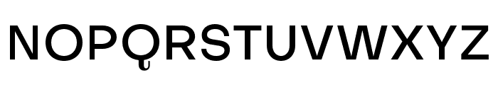 SubjectivitySerif-Medium Font UPPERCASE