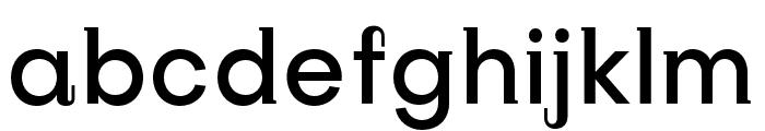 SubjectivitySerif-Medium Font LOWERCASE
