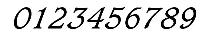 Sudbury Book Italic Font OTHER CHARS