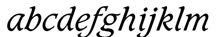 Sudbury Book Italic Font LOWERCASE