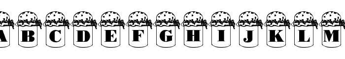 Summers Country Jars Font LOWERCASE