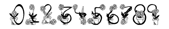Sunflowers Font OTHER CHARS