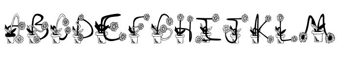 Sunflowers Font UPPERCASE