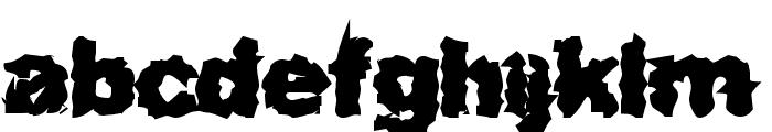Surf Punx Heavy Font LOWERCASE