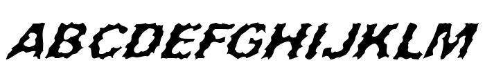 Surf Punx Italic Font UPPERCASE