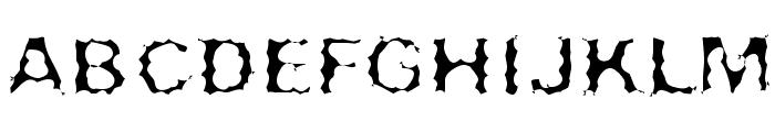 Surf Punx Light Font UPPERCASE