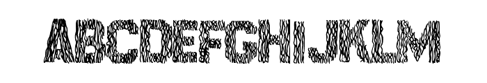 SurfPoint Font LOWERCASE