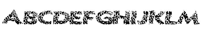 SurfShack Font UPPERCASE