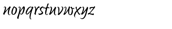 Sunetta Flair Font LOWERCASE