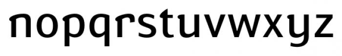 Susan Book Font LOWERCASE