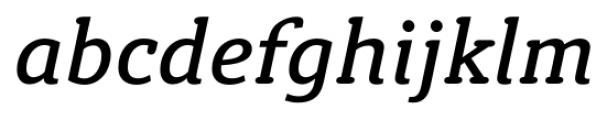 Susan Classic Book Italic Font LOWERCASE