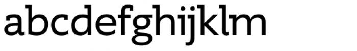 Supra DemiSerif Font LOWERCASE