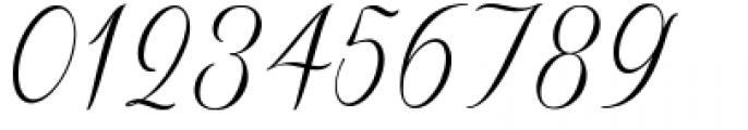 Sverige Script Clean Font OTHER CHARS