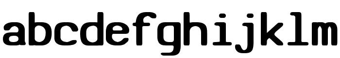 SV Basic Manual Bold Font LOWERCASE