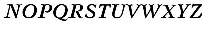 Svetlana Bold Italic Font UPPERCASE