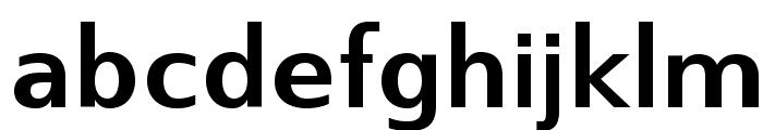 SwitzeraADF-Bold Font LOWERCASE