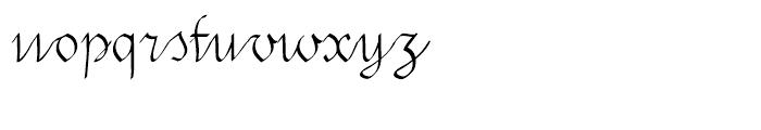 Swirlity Script Regular Font LOWERCASE