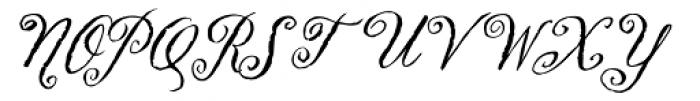 Swank Regular Font UPPERCASE