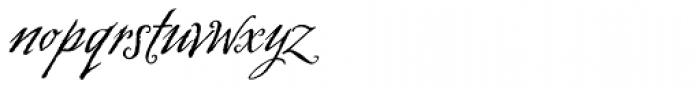 Swank Regular Font LOWERCASE