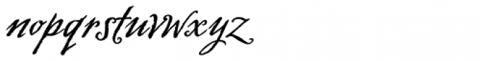 Swank Std Bold Font LOWERCASE
