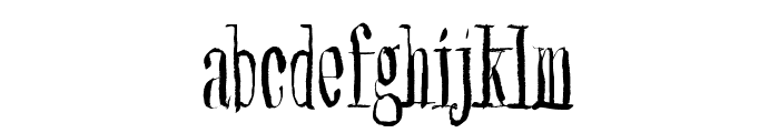 Synonym Blank Font LOWERCASE