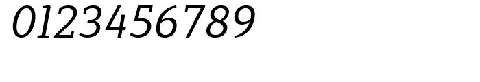 Synerga Pro Italic Font OTHER CHARS