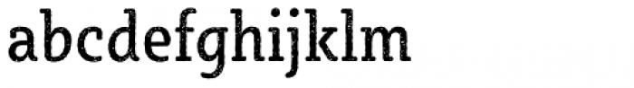 Sybilla Rust Pro Condensed Regular Font LOWERCASE