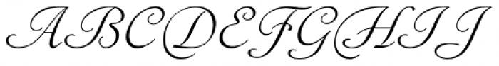 Sylphe Pro Italic Font UPPERCASE