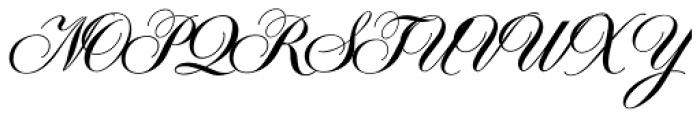 Symphony Pro Bold Font UPPERCASE