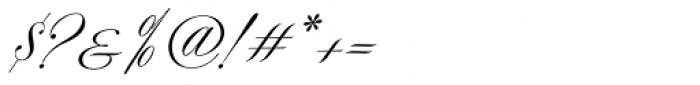 Symphony Pro Regular Font OTHER CHARS
