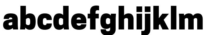Tanohe Sans ExtraBold Font LOWERCASE