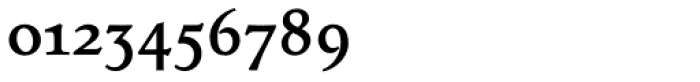 Tarocco OSFOT Bold Font OTHER CHARS