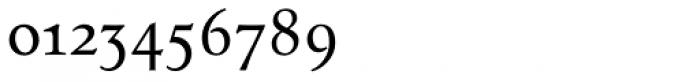 Tarocco OT Smallcaps Font OTHER CHARS