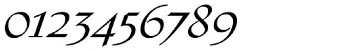Tasci Kursiv Swash Font OTHER CHARS
