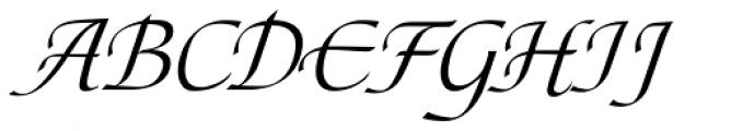 Tasci Kursiv Swash Font UPPERCASE