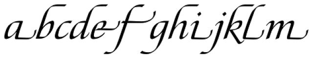 Tasci Kursiv Swash Font LOWERCASE