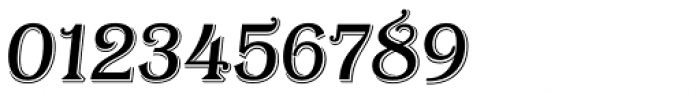 Tavern Regular Italic Font OTHER CHARS