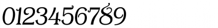 Tavern S Plain Light Italic Font OTHER CHARS