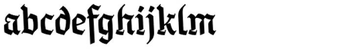 Taxco Medium Font LOWERCASE