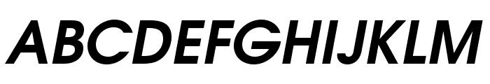 TeXGyreAdventor-BoldItalic Font UPPERCASE