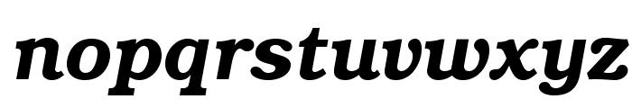 TeXGyreBonum-BoldItalic Font LOWERCASE