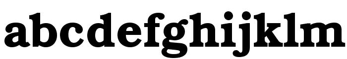 TeXGyreBonum-Bold Font LOWERCASE