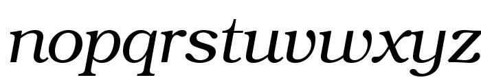 TeXGyreBonum-Italic Font LOWERCASE