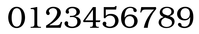 TeXGyreBonum-Regular Font OTHER CHARS