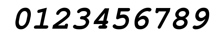 TeXGyreCursor-BoldItalic Font OTHER CHARS