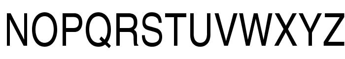 TeXGyreHerosCondensed-Regular Font UPPERCASE