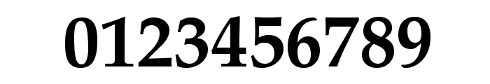 TeXGyrePagella-Bold Font OTHER CHARS