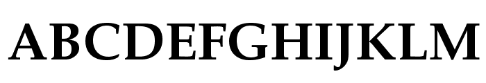 TeXGyrePagella-Bold Font UPPERCASE